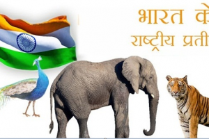 भारत के राष्ट्रीय प्रतीक चिन्ह  – National Symbols of India in Hindi