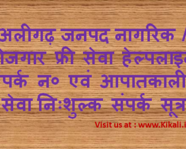 निःशुल्क सेवा सहायता अलीगढ़ हेल्पलाइन Aligarh Helpline Number aligarh.nic.in Toll Free Tatkal Seva
