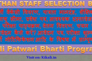 पाली पटवारी भर्ती 2021 Pali Patwari Bharti Program 2021