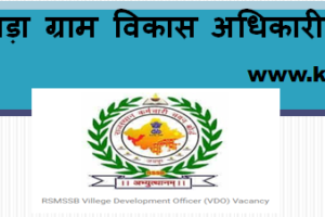 भीलवाड़ा ग्राम विकास अधिकारी भर्ती 2021 Bhilwara VDO Bharti Program 2021