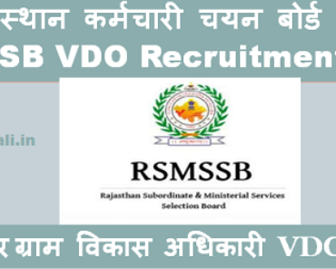 जयपुर ग्राम विकास अधिकारी भर्ती 2021 Jaipur VDO Bharti Program 2021
