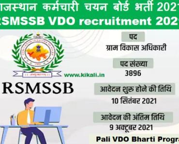 पाली ग्राम विकास अधिकारी भर्ती 2021 Pali VDO Bharti Program 2021