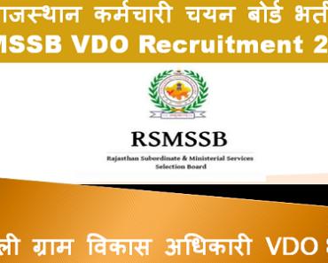करौली ग्राम विकास अधिकारी भर्ती 2021 Karauli VDO Bharti Program 2021